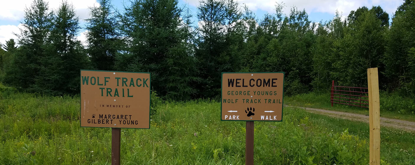 youngs-wolf-track-hiking-trail