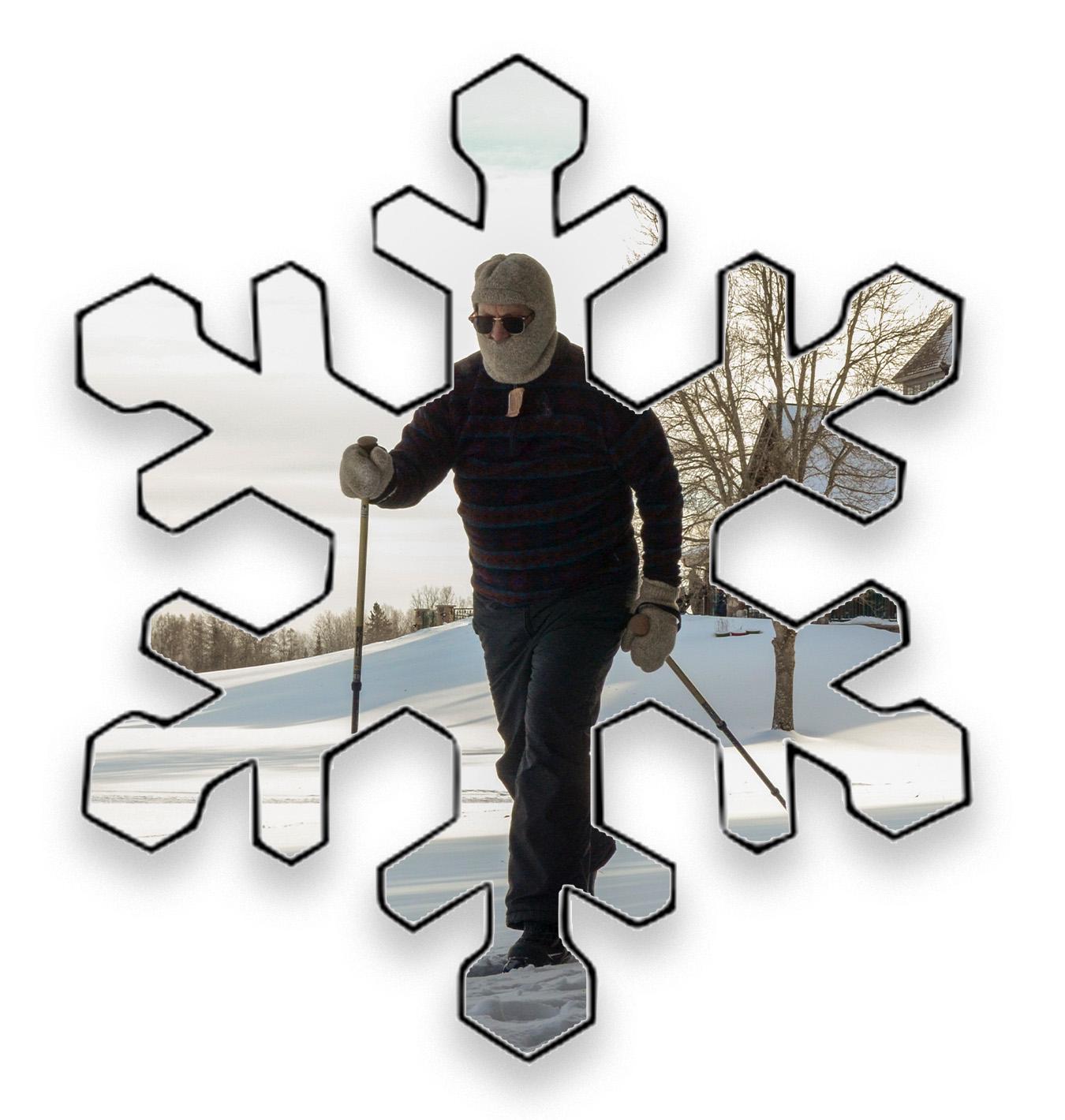 Snowflake website 2